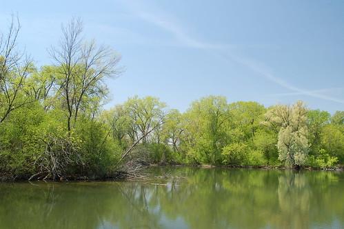 靠近Wingra的小池塘