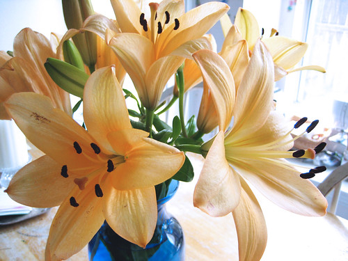 Anniversary Lilies