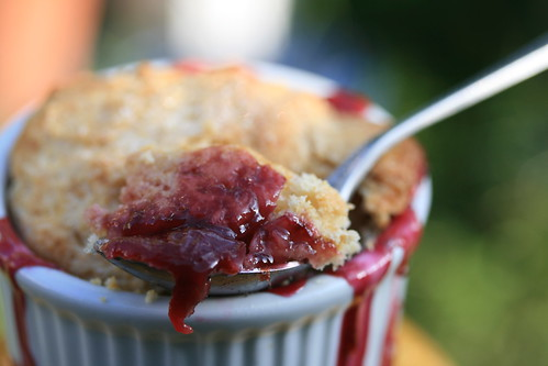 Cherry Rhubarb Cobbler (Tuesdays with Dorie)