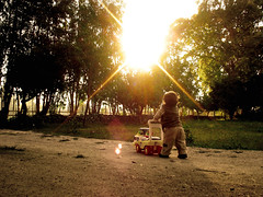 Baby Steps: pequeos pasos (TRUZYNA PHOTOGRAPHY) Tags: autumn boy sunset baby cute walking landscape kid scenery tramonto afternoon sonnenuntergang little sweet walk nogales herbst steps kind paseo beb campo otoo dmmerung nio tarde pequeo crepsculo caminando crepuscolo pasos herbstimmung