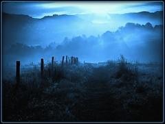 bei Dieringhausen - blue morning
