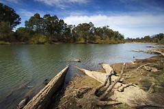 IMG_0723_Murray_River_Corowa