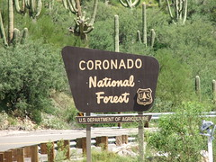 Entereing Coronado National Forest