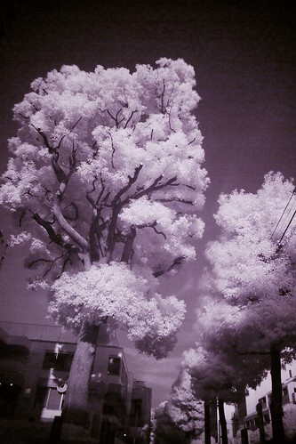 Digital IR