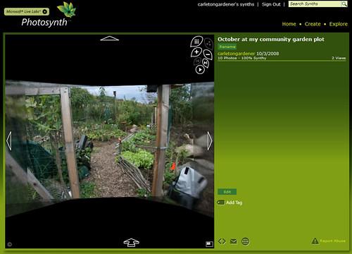 photosynth - October at my community garden plot