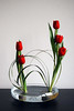 Ikebana 'building Bridges'