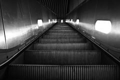 Rolltreppe (Frdric - Etienne) Tags: city metal stuttgart stadt verkehr schwarz rolltreppe weis