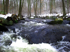 Saddle Stream - Andover (benjaminfish) Tags: trees snow fog forest woods connecticut andover