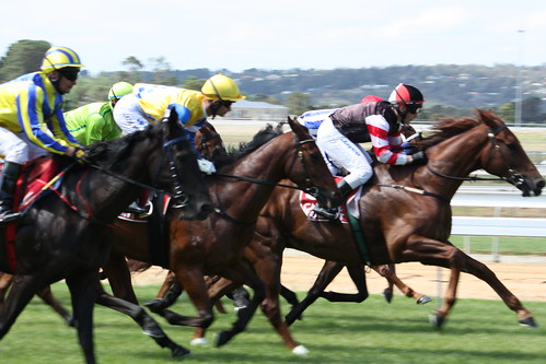 Horse Racing at Mornington