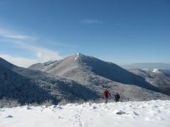 Grattaculo d'Inverno