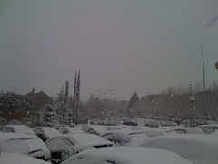 Nevada en Madrid - II