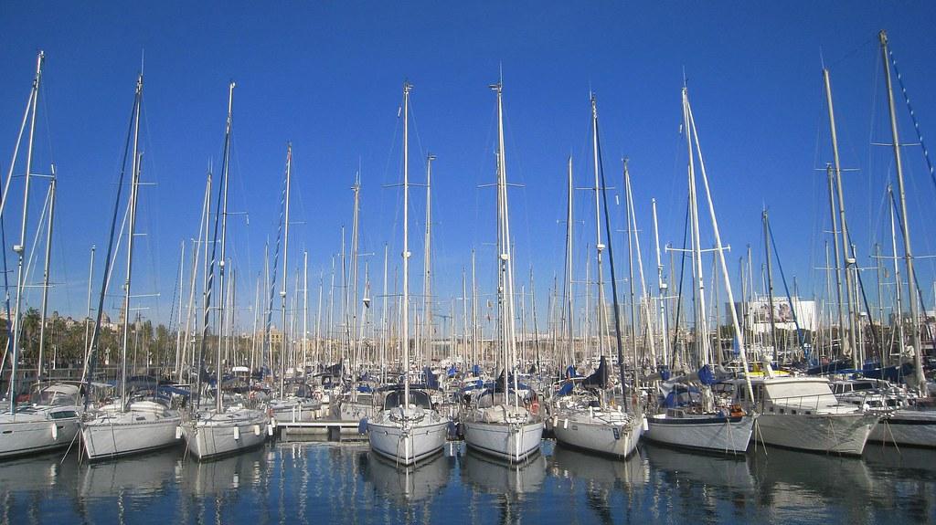 Sailboats in the marina.