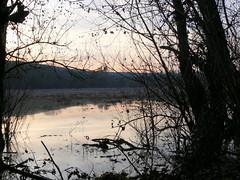 Doberd 17a/18 (AnnAbulf) Tags: alberi lago see albero karst bume spiegelung baum fvg babel carso riflesso friuliveneziagiulia doberd friauljulischvenetien iamiano doberdob jamlje