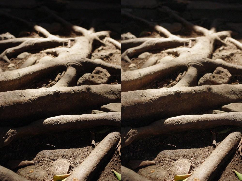 Km的一些影像處理心得分享D-range,NR,陰影補償