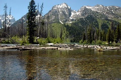 Grand Teton National Park (rdodson76) Tags: travel summer vacation mountains reflection tourism water relax landscape spring solitude quiet tour wildlife parks peaceful visit fresh clean clear serene wyoming wilderness pure grandtetonnationalpark