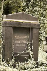 Prague_20090823_218 (negotiable_me) Tags: plants cemetery prague places czechrepublic melancholy jewishcemetery 2009 funereal pragueikov
