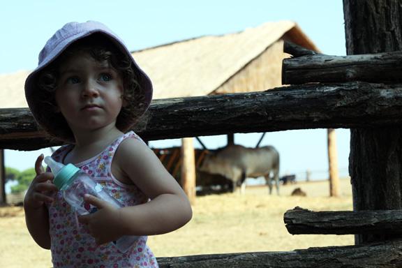 brioni bianka safari park