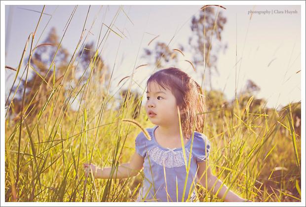 Fields of Long Grass I