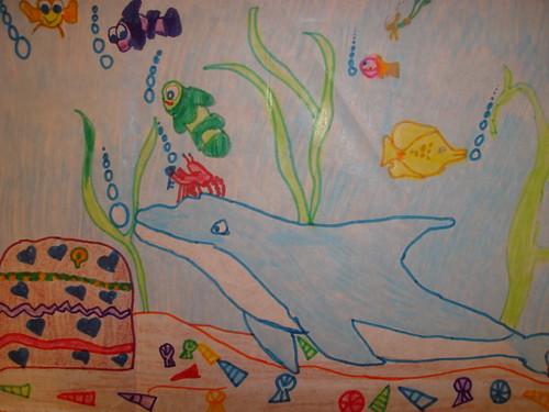 Echo dolphin