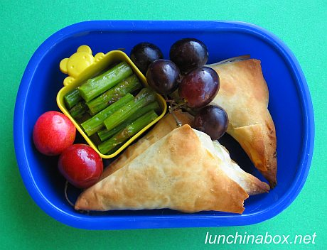 Spanakopita bento lunch for preschooler