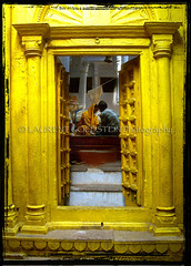 Living In God's Embrace (designldg) Tags: door people sculpture india yellow temple cow colours religion devotion varanasi spiritual shanti hindu benaras uttarpradesh  golddragon indiasong articulateimages hourofthesoul