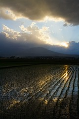 Where Heaven and Rice Fields meet (jasohill) Tags: sunset sky mountain mountains nature water japan bronze clouds 1025fav landscape photography eos 350d japanese landscapes heaven rice crop iwate canon350d backgrounds fields  2008    tohoku matsuo jasonhill touhoku hachimantai    twip aplusphoto canonef24mmf28 fotocompetition fotocompetitionbronze fotocompetitionsilver