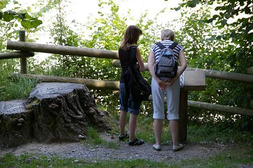 """走了一段, 會到Fribourg的蓄水池(水源地?) 有人專心的看著""""鐵書""""在那研究"""