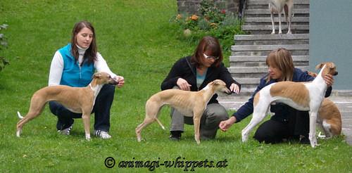 Annie, Anukis & Quentin