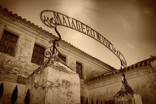 Matadero Municipal 02