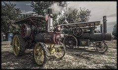Steam Tractors - Steaming Up