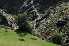 d0806334 (m-klueber.de) Tags: españa rio río de spain andalucia 2008 andalusien trevelez spanien taha schlucht trevélez busquistar saumweg pitres 20080920 mk2008andalusien mk2008andalusien9 tahadepitres d0806334 carrihuela mkbildkatalog