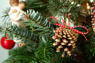 christmas pinecones by you.