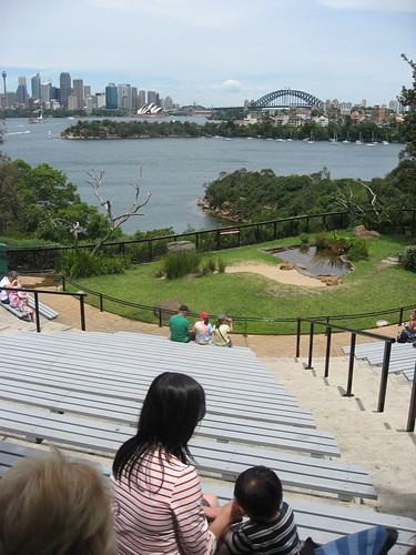 View of Sydney from T Zoo