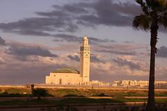 casablanca (c1freund) Tags: africa mosque marocco afrika casablanca marokko moschee