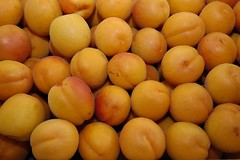 Abricots du March de Rungis (Rungis International) Tags: fruits lgumes rungis abricot marchderungis