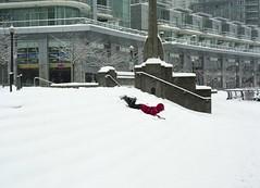 Sledding in Coal Harbor (Michael Kalus) Tags: snow canada vancouver december bc snowstorm sledding 2008 coalharbor fujisuperia100 mamiya645protl