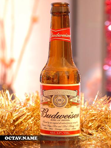 Budweiser de Craciun ~ Dragos
