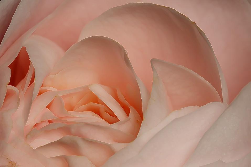 IMAGE: http://farm4.static.flickr.com/3094/3149256591_d7d896f754_o.jpg