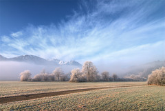 to follow the timeline (gregor H) Tags: trees winter mist misty landscape austria thringen frost timeline hoar vorarlberg visionqualitygroup