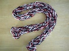 Ryn knit a skinny scarf!