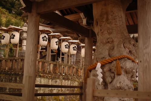 加賀神明宮 (山下神社)