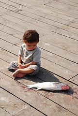 ... (~Behzad~) Tags: baby fish dead nikon iran kish conceptual     behzad  golestani