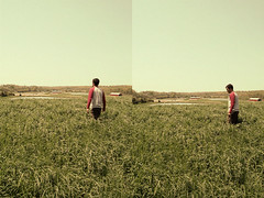 Adam Gabriel (helchrist) Tags: red summer fish love film boyfriend up grass shirt walking is photo jumping frolic farm kentucky grain tan running 80s p tall haha tad done now acres ponds bard tagging bit leaping bronzed 210 mayers
