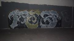 FED (FIGHTENTILDEATH) Tags: beach graffiti long acid crew fed paramount deiz