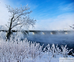 Winter Garden   -38c (Fernando Farfan.ca) Tags: bridge winter sun snow cold ice water ottawa seasonal blues steam ottawariver cbcradio3 38c springaroundthecorner thebestoftheday menos40
