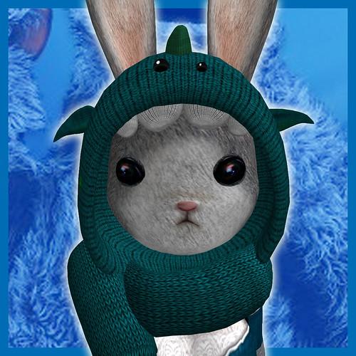 bunnyweekdone01