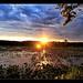 Sunset over Oxbow Lake