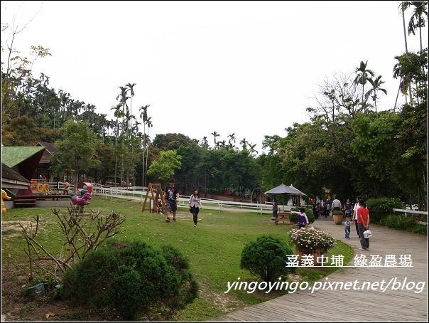 嘉義中埔_綠盈農場20110417_R0019017