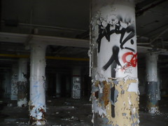 (Billy Danze.) Tags: chicago abandoned graffiti afro rip 42 kym afroe af42