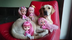Iva and my pink dolls